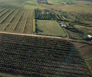 Farm aerial view -target realtors