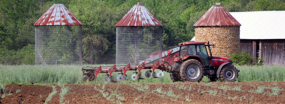 Farm-photo-Tractor-Silosby-Emelia-Aiken-Hafner-(164b)