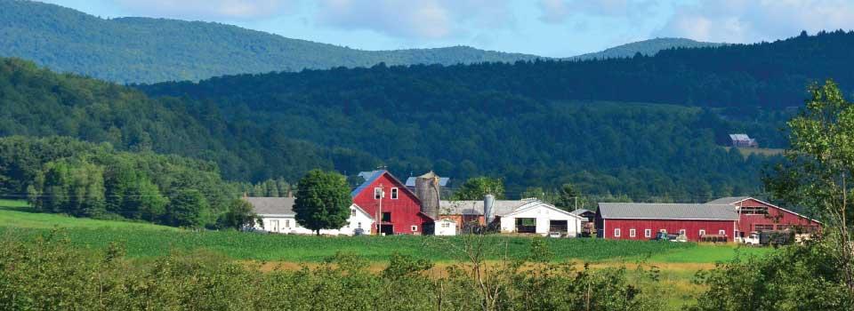 dairy-farm-mountain-background