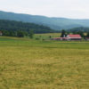 stock-farm-photo-217