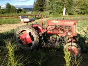 tractor-byJimHafner