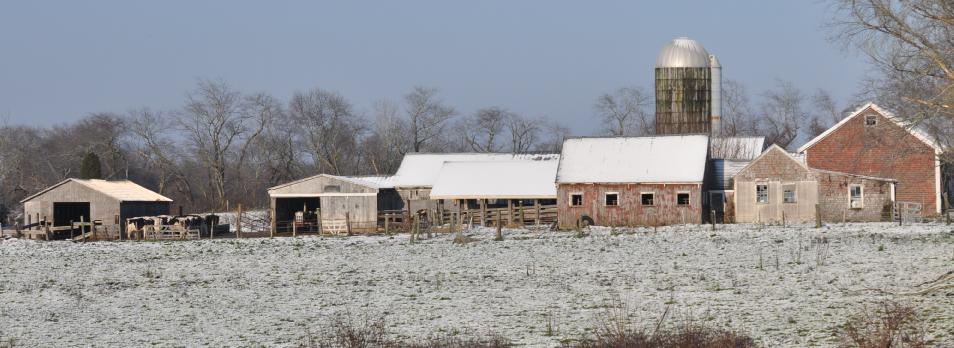 winter-lessard-farm